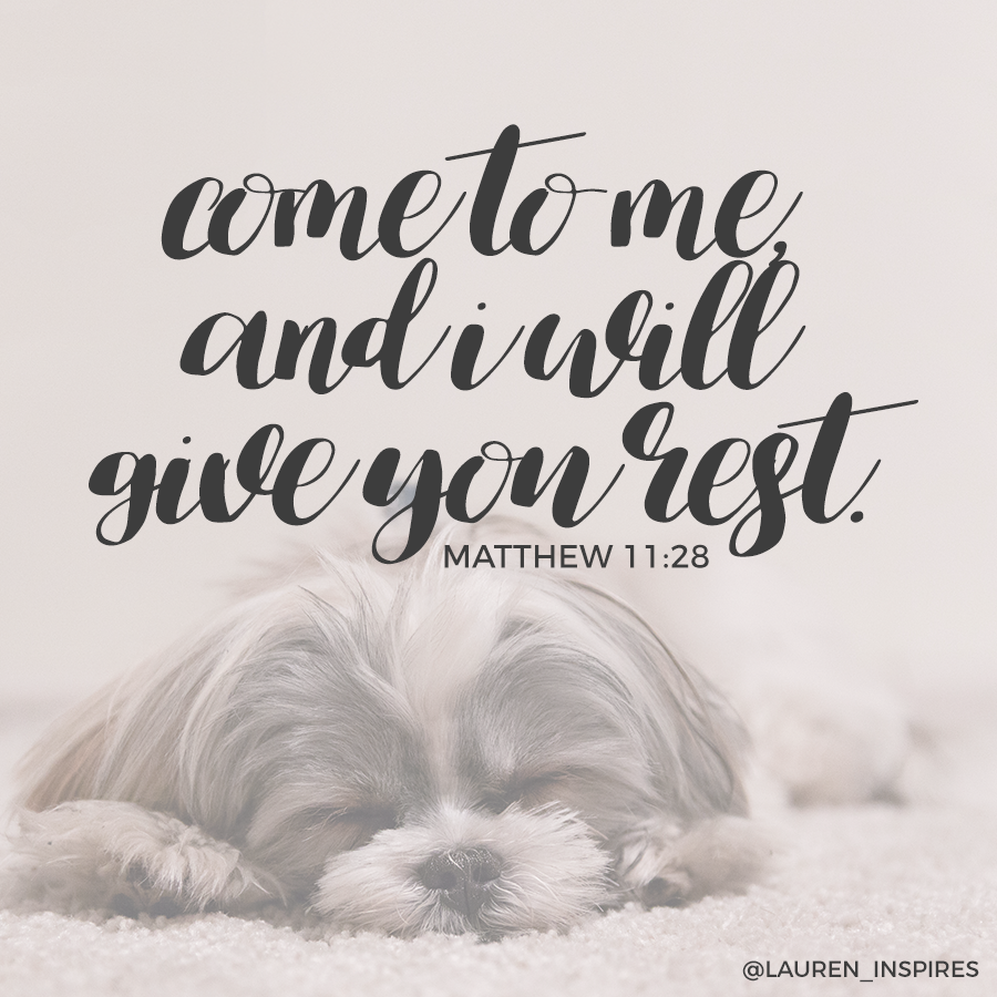 """Come to me, all you who are weary and burdened, and I will give you rest."" -Matthew 11:28"